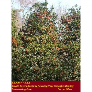 Berry Tree - Inspirational Sign - Darryn Silver